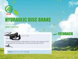 Czjb neuer Entwurfs-hydraulisches Scheibenbremse-System für Bergc$e-fahrrad