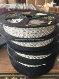 Striscia di buona qualità SMD 5050 LED per illuminazione della stanza