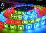 Jardín de la luz de tira de SMD 5050 LED