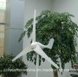 La S digita a 100W 12V il piccolo mulino a vento della decorazione del giardino (SHJ-100S)
