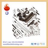 기계를 형성하는 중국 제조자 CNC 봄