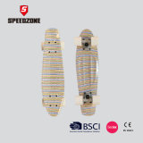 "22 ""Complete Graphic Design Penny Board"