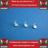 Neodimio Home Depot del magnete per la Spagna Italia Francia Ceco