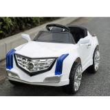 Elektrisch rit-op auto-Wit tl-5288 van het Stuk speelgoed van Kinderen (twee motor twee batterij)