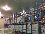 果物と野菜のための低温貯蔵部屋デザイン食糧冷蔵室