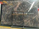 ツツジの赤い大理石の黒い大理石の平板