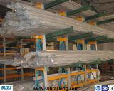 Het populaire Opschorten van de Cantilever van het Gebruik voor Opslag van de Goederen van het Pakhuis de Lange Onregelmatige