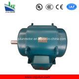 Motore asincrono a tre fasi Js126-6-155kw del frantoio del motore di CA di bassa tensione di serie di Js