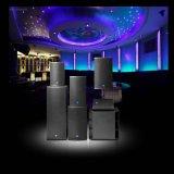 "15"" caja de sonido Gran Poder de altavoces de sonido profesional Louspeaker"