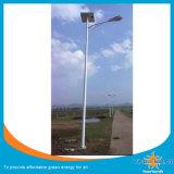 OEM solare della fabbrica dell'indicatore luminoso del giardino di 30W LED