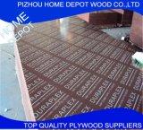 Preto marinho da madeira compensada/folha enfrentada película madeira compensada de Brown para a construção e bens imobiliários
