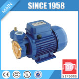 DB-Roheisen-Wasser-Pumpe mit dem Cer genehmigt