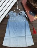 Klaar Gemaakt Meisje Jean Dress in de Kleren van Kinderen