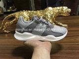 La manera se divierte los zapatos ocasionales de las zapatillas de deporte de los zapatos corrientes de los zapatos