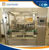 2017 ha personalizzato la riga automatica di Producation di riempimento a caldo della spremuta