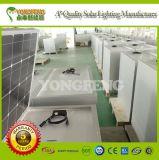 Iluminação ao ar livre solar Bateria-Baseada de alta qualidade