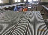 冷間圧延されたステンレス鋼の継ぎ目が無い管/管(TP317L)