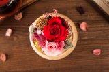Fiore di Music Box dell'altoparlante di Ivenran Bluetooth per il regalo e la decorazione