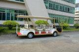 Buggy facente un giro turistico elettrico delle rotelle di marca 4 di Rariro