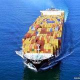 Dienst van de Logistiek van het kledingstuk de Huis-aan-huis van China aan Hamburg