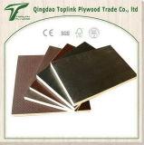 Contre-plaqué latéral de glissade de l'assurance la commerciale anti pour le plancher de conteneur