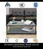 Table basse de l'écorcement Hzct119 le cadre extérieur en verre neuf en métal