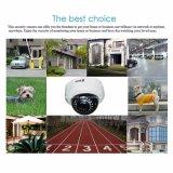 2.0MPソニーCCDのVandal-Proof監視の機密保護IPのカメラ