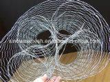 Sailin Горяч-Окунуло шестиугольное плетение мелкоячеистой сетки