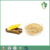 4:1 antioxydant normal ~20 de poudre d'extrait de 100% Yacon : 1, Fructooligosaccharide
