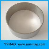 De magnetische Materiële Grote Magneet van Fecrco van de Ring