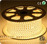 5050 tiras flexibles al aire libre 120V de la luz LED