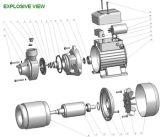 1.0HP pompa ad acqua elettrica di vortice domestico di piccola dimensione di uso Qb80