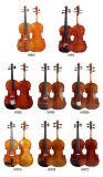 Violino dello strumento musicale in vetroresina 4/4 di cassa del violino