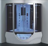 sauna del vapore di 1500mm con la Jacuzzi e Tvdvd (AT-G9050-1TVDVD)