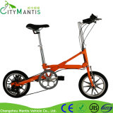 Складной E-Bike с тучной автошиной