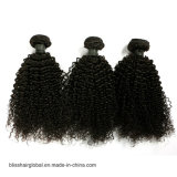 까만 색깔 흑인 여성을%s 비꼬인 컬 사람의 모발 직물