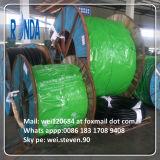 Câble électrique de cuivre blindé isolé par PVC souterrain de fil d'acier de XLPE