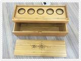 5개의 동전 대나무 전람 상자와 수집가 동전 상자