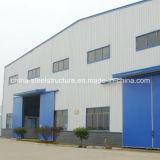 Taller profesional de calidad superior y almacén de la estructura de acero del diseño