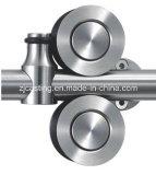 Hardware de la puerta de la ducha (LS-SDG-0624)