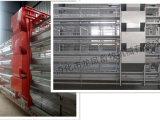 Oito capacidade das séries 256 de gaiola automática cheia da camada