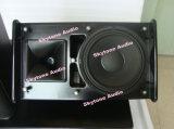 De Professionele PRO AudioLuidspreker van Skytone PS15
