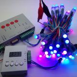 De Flexibele LEIDENE van de Gift DC12V van Kerstmis Waterdichte IP65 5m RGB LEIDENE van de Strook Reeks van de Strook