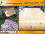Pequenos chineses PPGI Steel Coil Building Materials