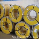 Bobine divisible 304 d'acier inoxydable de qualité de la meilleure qualité