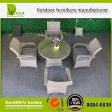 Muebles de mimbre de la rota del jardín que cenan el conjunto para al aire libre