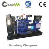 20kw, 50kw, générateur de gaz de biomasse de 100kw To2000kw
