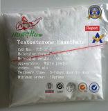 Testoterone anabolico Enanthate dell'ormone steroide dei composti intermedi farmaceutici