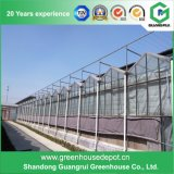 高品質の農業のための透過ポリカーボネートシートの温室