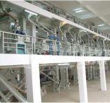 Mehl-Fräsmaschine des Mais-50tpd mit 3 Jahren Garantie-